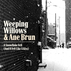 A Snowflake Fell (And It Felt Like A Kiss) feat. Ane Brun profile picture